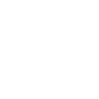 Fregat del sòl